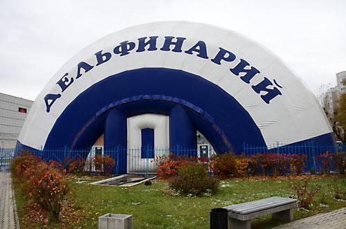"""""""Освященный"""" дельфинарий"""